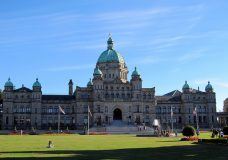 BC sets rules for referendum, gives designated opponent and proponent groups $500K each