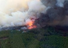 BC introduces burning restrictions to help curb wildfires amid COVID-19 pandemic