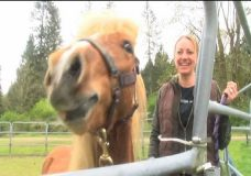 Healing with horses, Nanaimo event connects first responders and equines