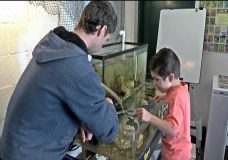 Gorge Park Nature House welcomes visitors every weekend