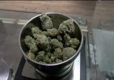 Distance between Victoria pot shops to be doubled