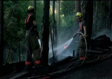 West Shore RCMP investigating cause of Metchosin brush fire that left two homeless