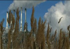 B.C. government appoints climate advisory council