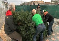 Volunteers beautify downtown Nanaimo corner for Christmas