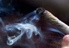 B.C. set to introduce rules on regulating recreational marijuana