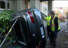 Driver lucky to escape serious injury after crashing into neighbour's yard