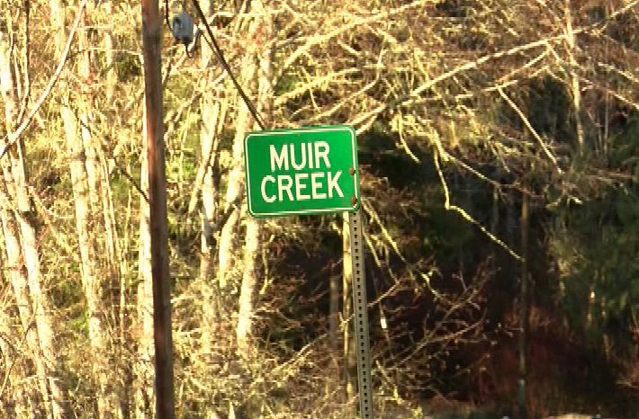For now, Muir Creek safe from logging scare