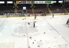Grizzlies topple Clippers on teddy toss night