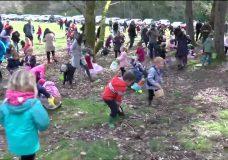 Families flock to Easter Egg Hunt at Beaver Lake