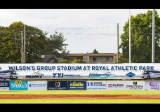 HarbourCats change park name, add vintage bus for fan seating