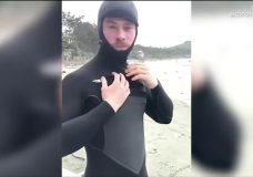 Thor star makes stop in Tofino