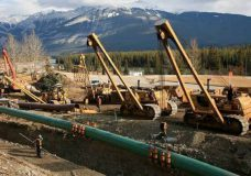 Federal government intervenes B.C. reference case over pipeline expansion