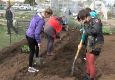 Victoria's first school garden opens to inspire next generation of farmers