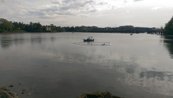 A dive team searches a sailboat that sank into the Selkirk Waterway after an explosion and a fire on May 31, 2018.