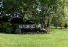 Victoria City Council votes to ban vehicles in Beacon Hill Park this summer