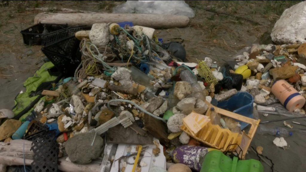 Clayoquot Cleanup finds ocean plastic deep in forest