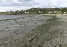 Vancouver Island gets second wave of low tides
