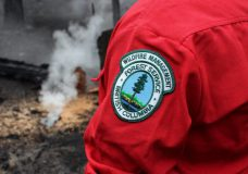 Two small wildfires suspected to be human-caused discovered on Vancouver Island