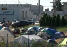 Injunction hearing for Saanich tent city gets underway with focus on fire safety