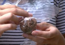 Nanaimo dog eats meatballs stuffed with contents to harm