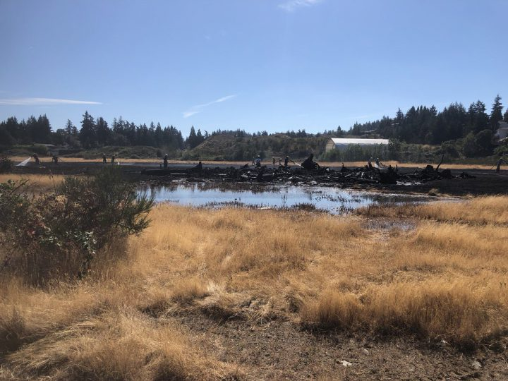Fire crews wrapping up and putting out hot-spots at the brush fire in Colwood (photo: Colwood City Councillor Gordie Logan)
