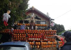 Boo! Share your photos of your spooky Halloween decorations