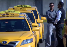 Elderly man allegedly refused taxi service from Swartz Bay because 'it wasn't a big enough fare'