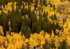 Warmer than normal fall expected across much of Canada