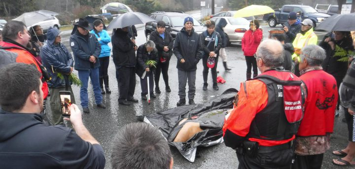 A dead orca was brought to Gold River after it was found dead on Nootka Island on Nov. 14, 2018. (Chief Jerry Jack/ Mowachaht/Muchalaht First Nation).