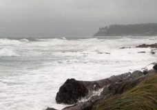 Environment Canada has issued a special weather statement for parts of Vancouver Island. Strong winds are expected. File photo.