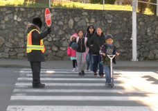Greater Victoria Crossing Guard Association looking for funding