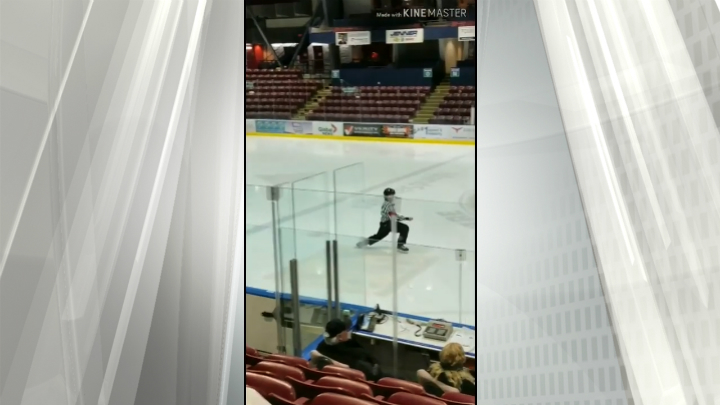 Dancing referees entertain fans at minor hockey game in Colwood