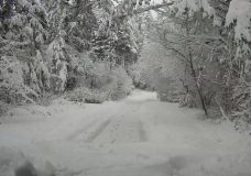 Epic! Victoria's had more February snow than much of Canada