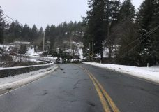 Areas on Highway 14 through Sooke open after storm blocks roads