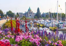 Records to fall in Victoria as heat wave settles over southern B.C.