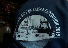 Salmon research trip in Alaska reveals surprising discoveries