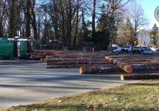 Dashcam video reveals frightening close call with Alberni logging truck