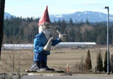 Howard the Gnome will soon have a new home on Vancouver Island. File photo.