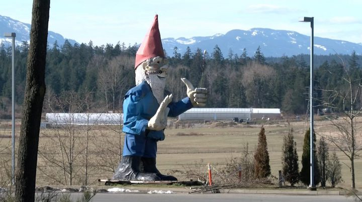 Howard the Gnome location shortlist includes Coombs, Parksville, Sayward and Saanich
