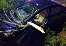 Terrifying carjacking attempts in Saanich led to injuries, damage