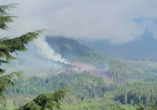 A 12-hectare fire seen from a home in Sayward (Photo: Ann Vansnick)