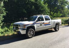 Shawnigan Lake RCMP are investigating after a child was struck and killed in a driveway in Cobble Hill.