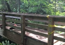 Footbridge set on fire in Nanaimo's Bowen Park