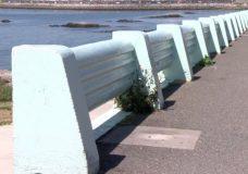 City of Victoria staff are recommending replacing the concrete railing along Dallas Road.