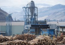 B.C. government offering support to forest sector to 'keep their doors open'
