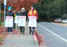 Saanich school strike by support workers impacts 8,000 students
