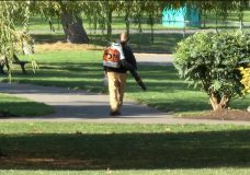 Blowing up controversy: Should gas leaf blowers be banned?
