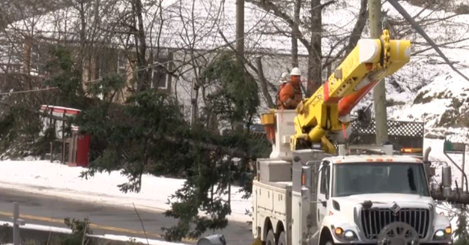 Crews deal with a tree on hydro lines after high winds this week.