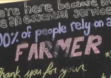 Struggling Island farmers are urging people to buy local throughout COVID-19