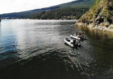 Hunting and fishing deemed essential services as BCWF pushes province to open parks
